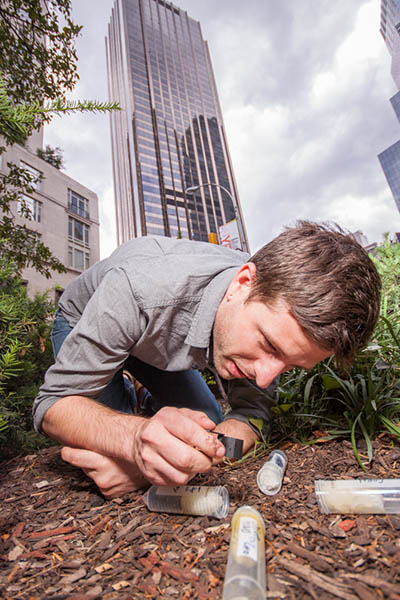 Prof. Clint Penick collects ants for his project on the Upper West Side of Manhattan.