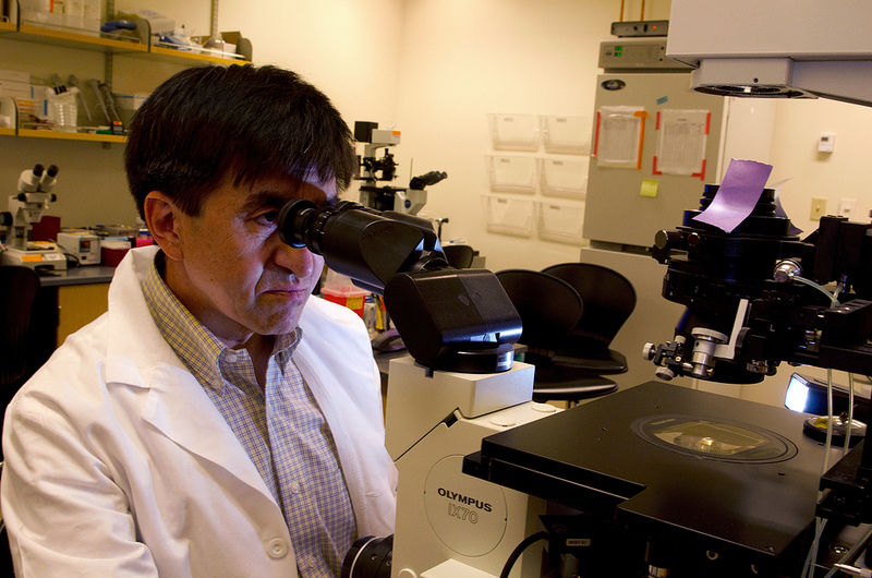 Senior study author Shoukhrat Mitalipov, PhD, in his lab at Oregon Health & Science University