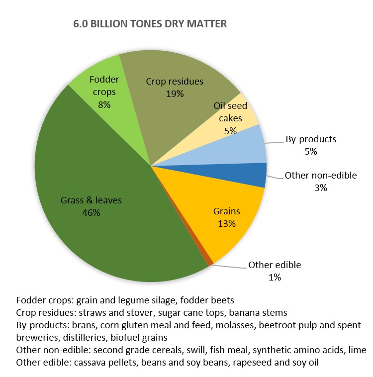 Global Livestock Feed Intake