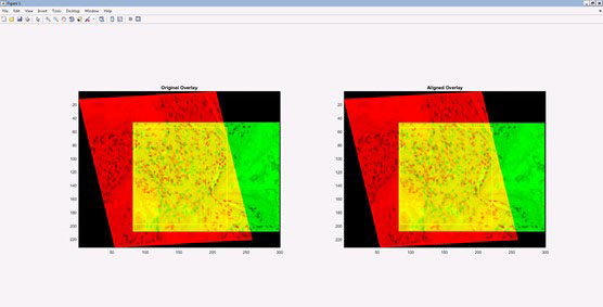 The algorithm produces a series of best-fit alignments, as demonstrated here. The first (left panel) best-fit alignment is based on user-defined anchoring points shared between the two images (see above), while the second (right panel) is based on a user-defined region of interest (ROI – yellow box). (Source: original images from Qin et al paper in Cell Stem Cell, published in 2013 and retracted in 2015)