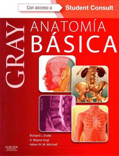 Reseña bibliográfica: \'Anatomía básica de Gray\' (II edición)