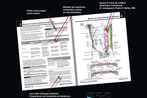 Nouvelle édition d'ANATOMIE A COLORIER : pour un apprentissage actif et ludique