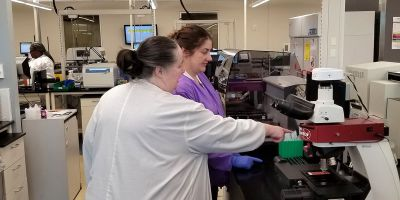 Preventing diagnostic errors by uniting the clinical laboratory with direct patient care
