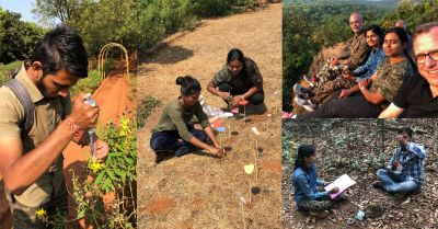 Butterfly effect: Meet the team protecting biodiversity in India