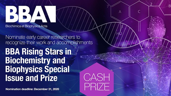 BBA-Twitter-Prize-Banner-600