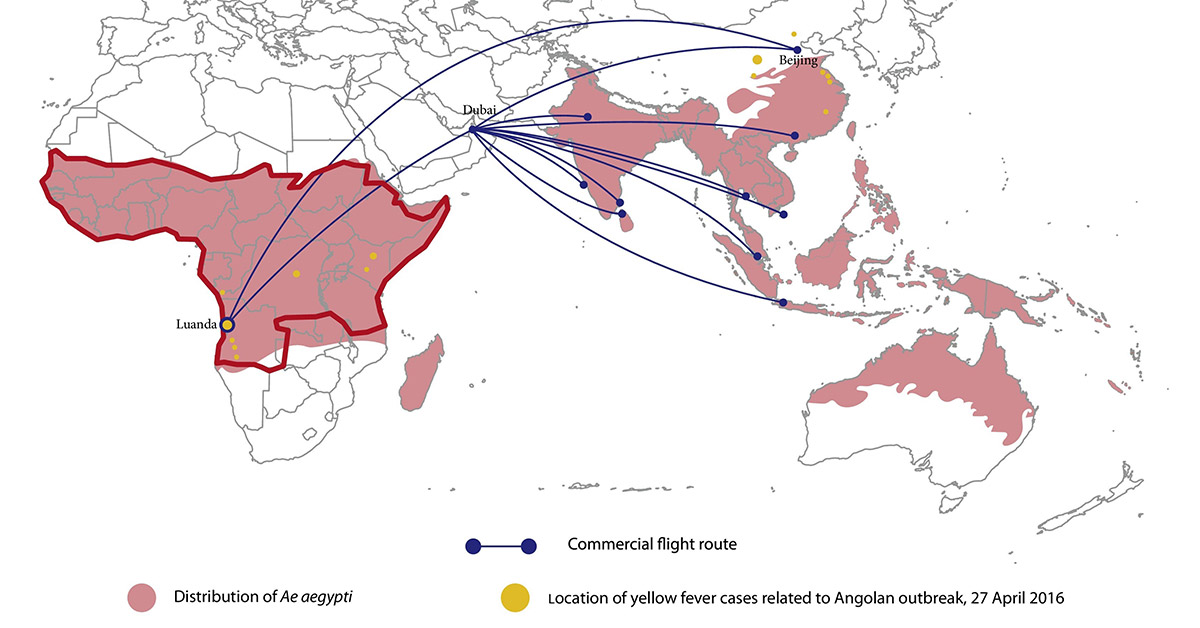 Map showing the distribution of <em>Aedes aegypti </em>across Africa and the Asia-Pacific region (areas shaded pink). The red outline delineates yellow fever-endemic regions. Yellow dots represent the location of yellow fever cases related to the Angolan outbreak (source: HealthMap). Commercial flight routes with direct connections between Luanda and Beijing and indirect connections from Luanda to South and Southeast Asia via Dubai (source: FLIRT) are also represented. (This map appears in Wasserman et al: <em>International Journal of Infectious Diseases</em>)