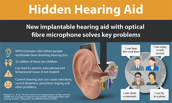 1048 Hidden hearing aid_info_final600.png