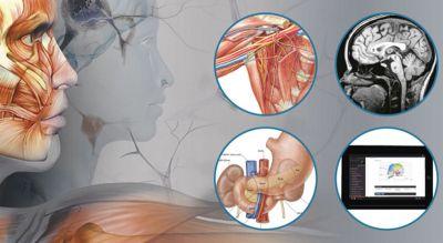 10 Formas prácticas de estudiar anatomía