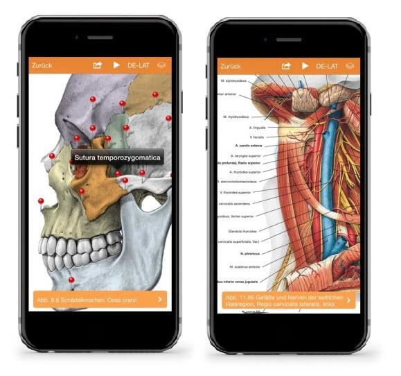 Sobotta-App | Elsevier