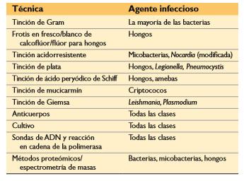 Técnicas para la identificación de los agentes infecciosos