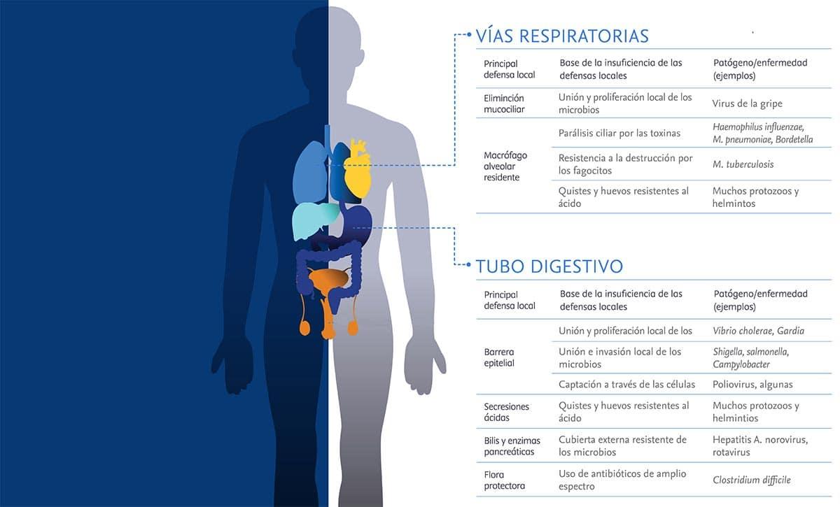 infección por parásitos que causan encefalitis