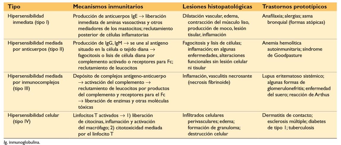 diabetes tipo 1 tipo 4 reacción de hipersensibilidad