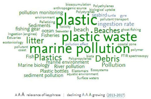Word cloud on current research on marine plastic waste. (Source: SciVal Topic Prominence)