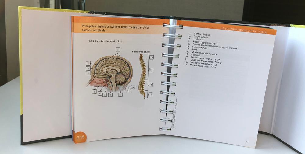 auto évaluation physiologie
