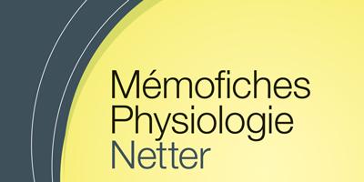Mémofiches Physiologie Netter : 200 fiches pour s'entraîner