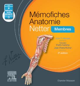 anatomie révisions