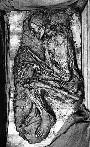 Tollund Man at the Silkeborg Museum in Denmark. Forensic scientists say he was buried with the noose around his neck after being hanged. (Image provided to Wikimedia Commons by Nationalmuseet, <a target=&quot;_blank&quot; href=&quot;http://creativecommons.org/licenses/by-sa/3.0&quot;> CC BY-SA 3.0</a>)