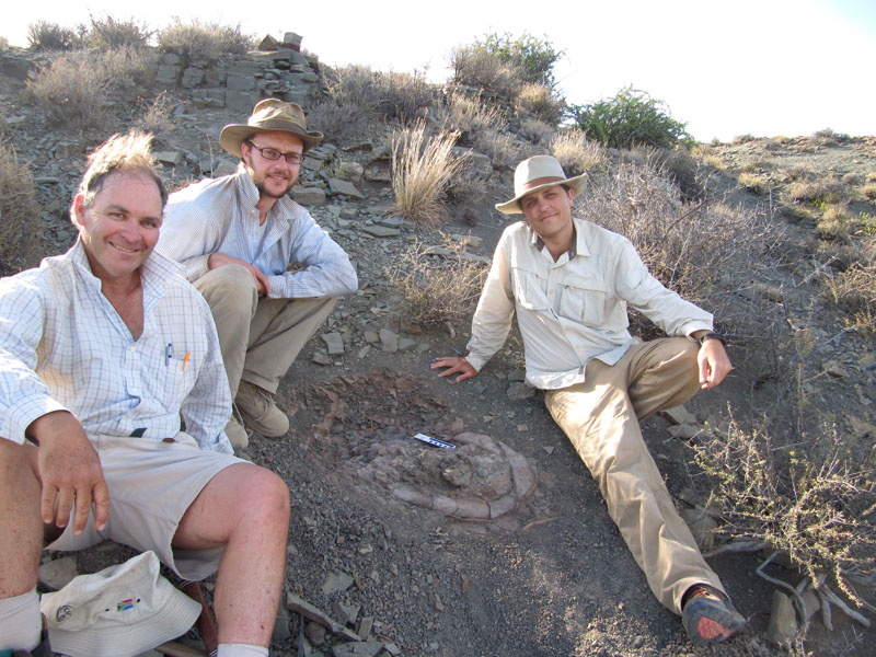 Tyler Lyson, PhD (center) with research partner Gabe Bevers, PhD (right) and Professor Bruce Rubidge, PhD (left) of  the University of Witwatersrand in Johannesburg gather around a skeleton of an early reptile in the middle Permian rocks of the Karoo Basin in South Africa. (Photo courtesy