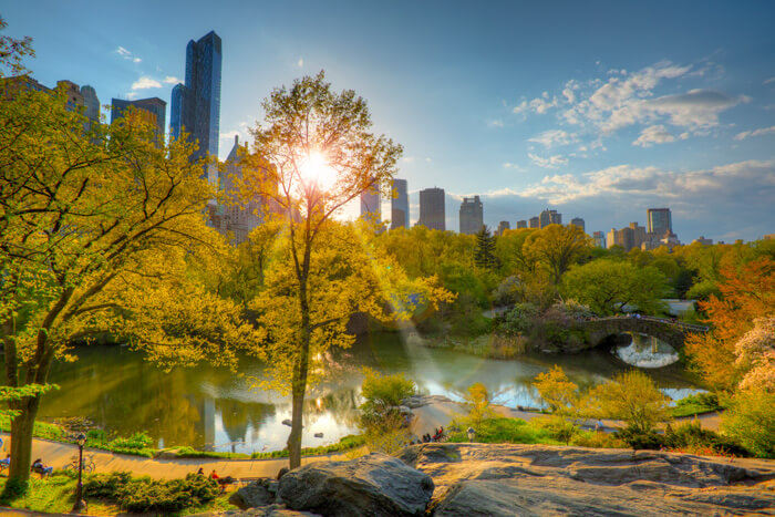Central Park New York City at sunset © istock.com/HenrikAMeyer