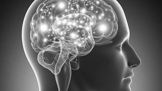 neuroendocrinologia.jpg