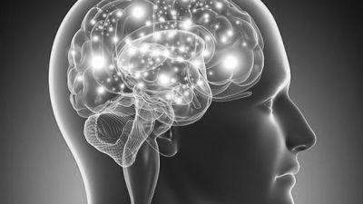 Presentación de la monografía: Actualización en Neuroendocrinología