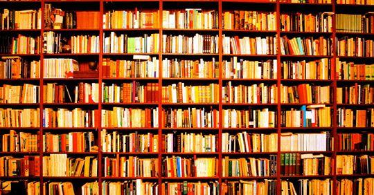 Catalogo-de-patologias-bibliotecarias-parte-1_.jpg