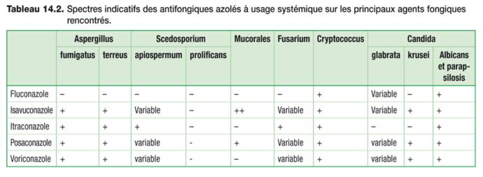 Antifongiques azolés_5