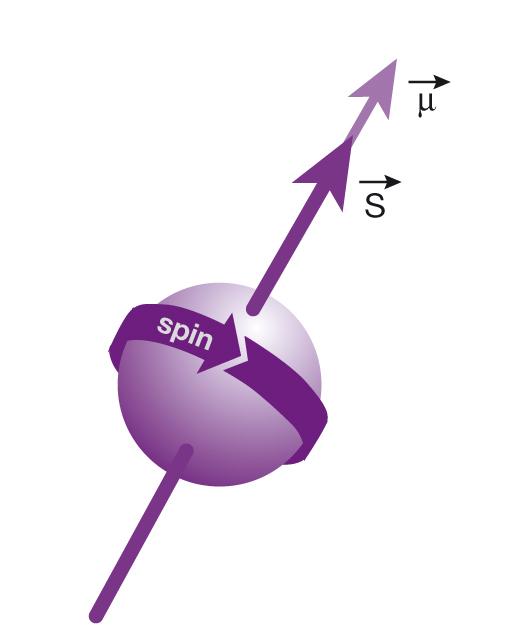 Magnétisme nucléaire_3