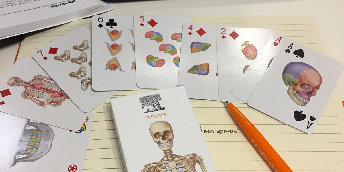 Jeu-de-carte-Anatomie-Elsevier-grand.jpg