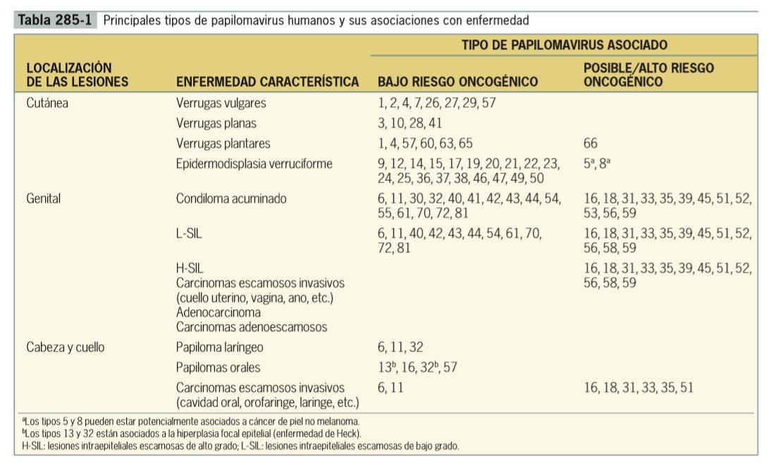 Tipos de paiploma virus (Farreras. Tratado Medicina interna)