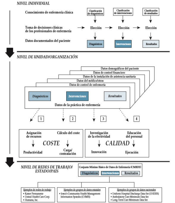 Lenguaje enfermería estandarizado NIC