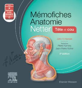 anatomie Netter fiches