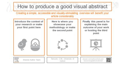Using graphical abstracts to enrich and expand the reach of your research
