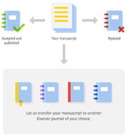 article transfer schema