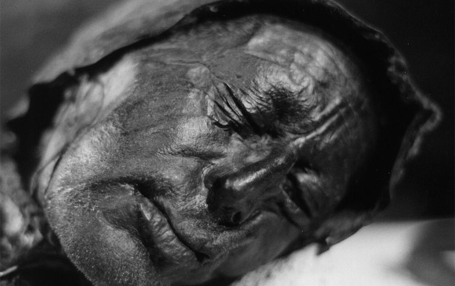 In the poem 'The Tollund Man', Heaney described in poetic detail the features of the corpse of a man preserved in a peat bog in the Jutland Peninsula in Denmark. Radiocarbon dating indicated that he lived in the 4th century BCE. (Photo by Sven Rosborn, Public Domain)