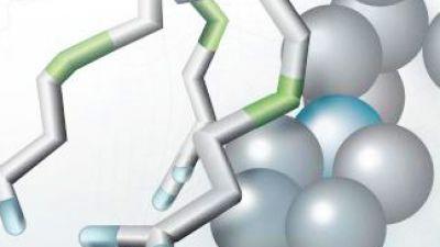 Manual de Farmacología Humana para profesionales y 'principiantes'