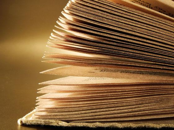 lectura2.jpg