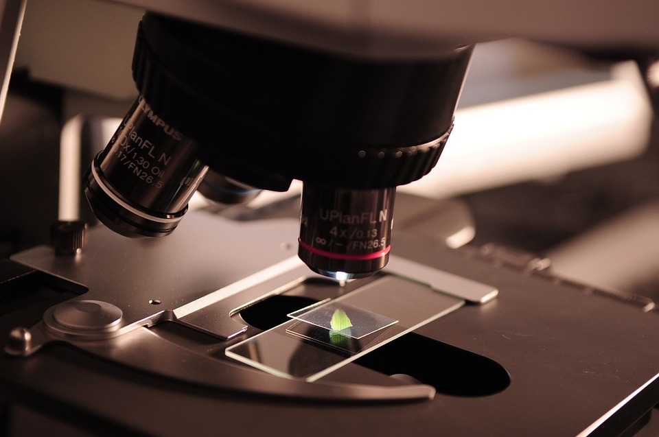 Novedades-microbiologia.jpg