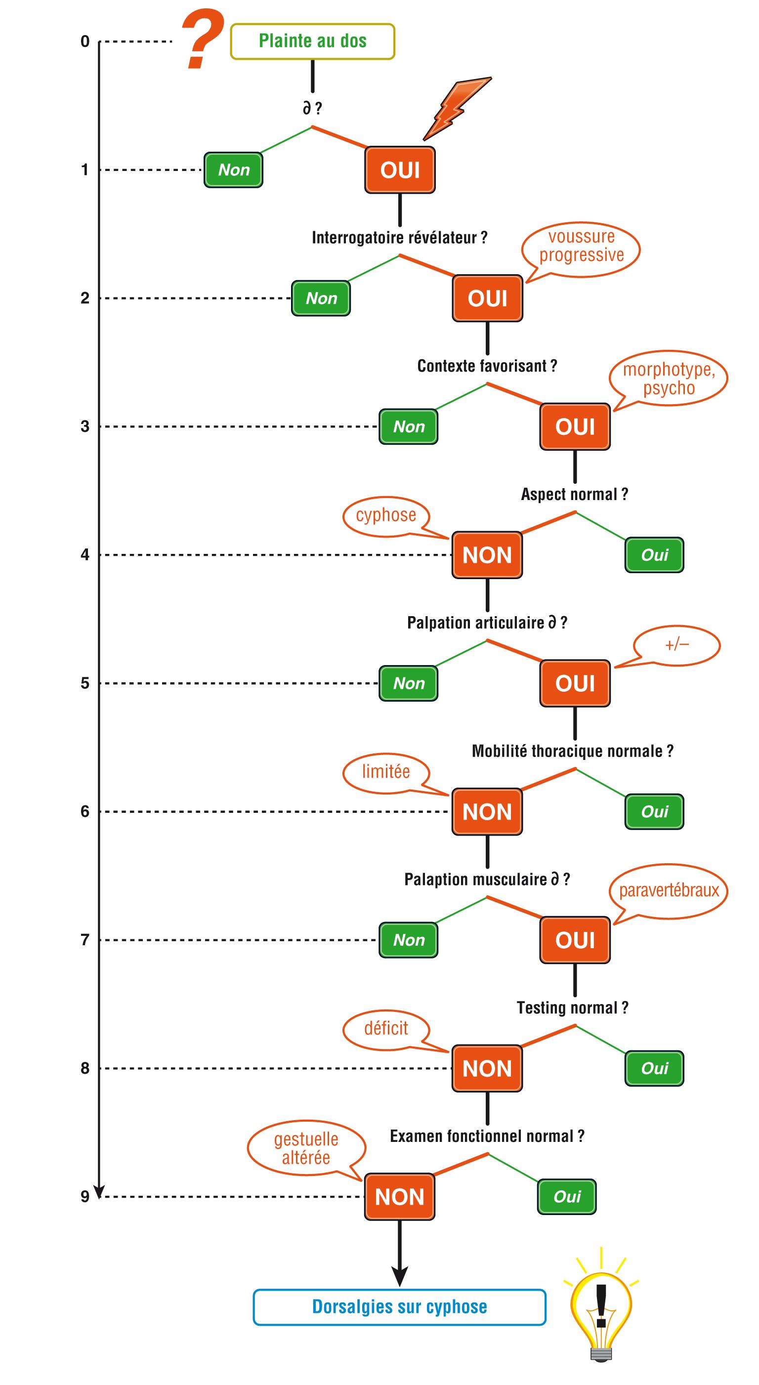 Dorsalgies sur cyphose schéma