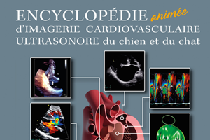 Chien et chat : malformations cardiovasculaires congénitales