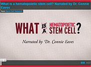 1-minute animation: What is a hematopoietic stem cell?
