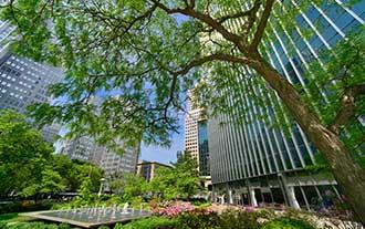 Center-park.jpg