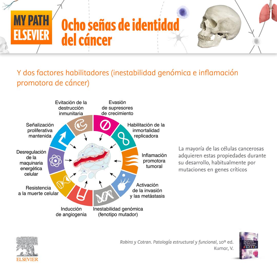 Ocho señas de identidad del cáncer y dos factores habilitadores