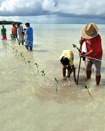 <strong>Planting of mangrove seedlings in Funafala, an islet of Funafuti Atoll, Tuvalu.</strong> Source: &copy; David J. Wilson for the IPCC 5th Assessment Report (AR5)