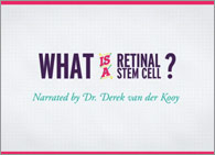 1-minute animation: What is a retinal stem cell?