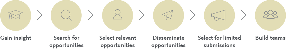Insight, discovery, decision-making