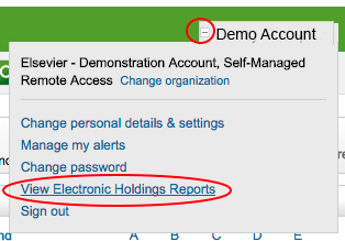 Holdings Reports - Demo Account