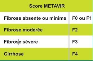 La fibrose et l'hépatite chronique C : Score METAVIR