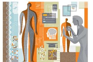 L'anatomie hier et aujourd'hui … quelle histoire !