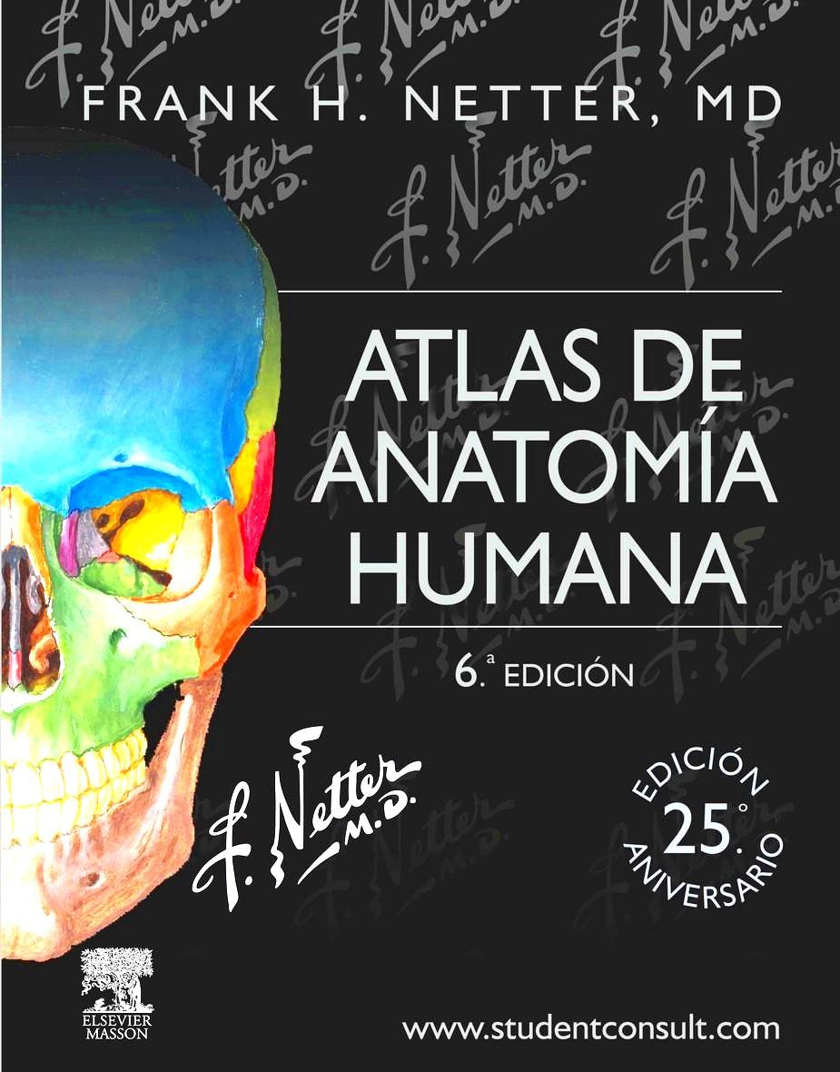 Atlas de anatomía humana Netter Medicina